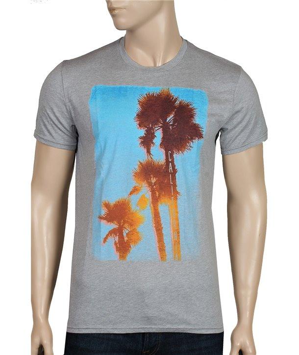Hollister pánské tričko 1352012