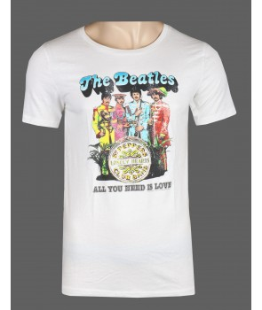 Hollister pánské tričko 2076902