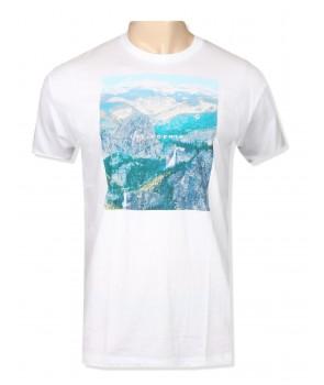 Hollister pánské tričko 1993100